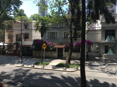 Polanco district